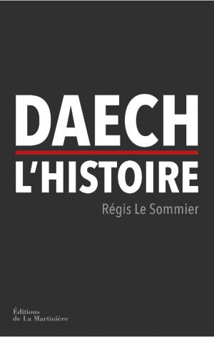 «Daech. L'histoire», de Régis Le Sommier, éditions de La Martinière,