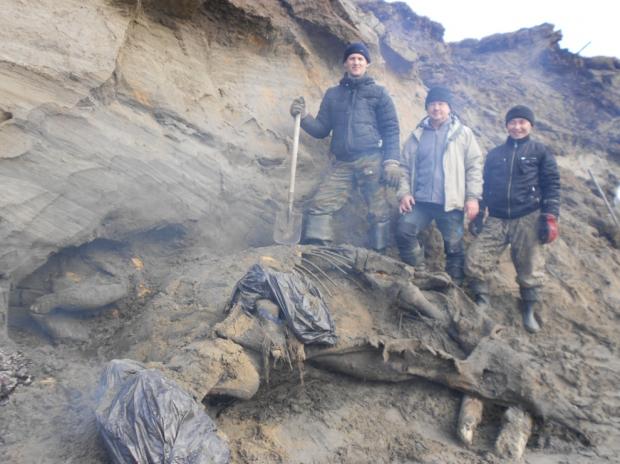 UN MAMMOUTH MORT IL Y A 45 000 ANS CETTE DÉCOUVERTE CHANGE LE RÉCIT DE L'HUMANITÉ Mammouth-squelette_inside_full_content_pm_v8