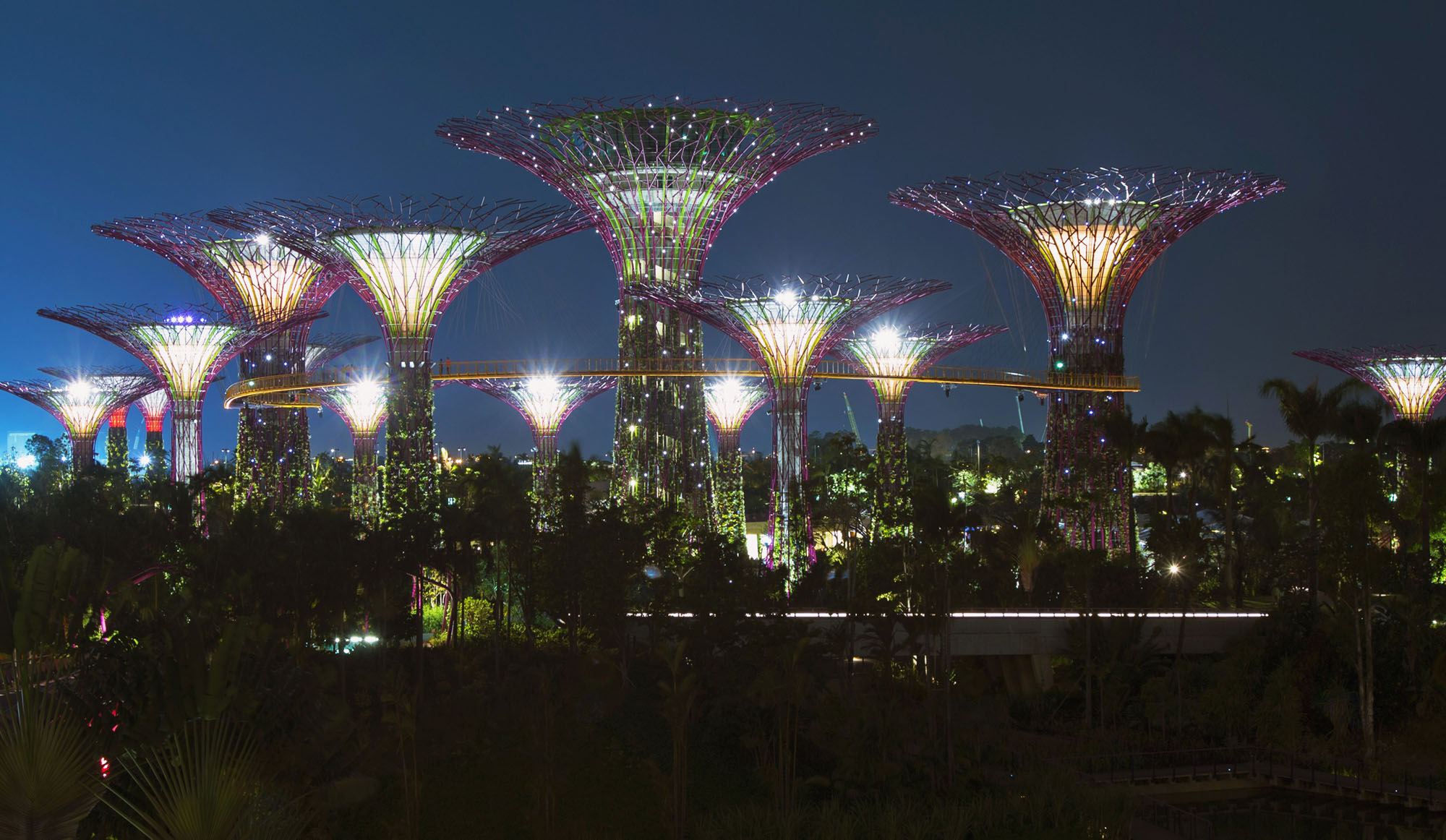 Le jardin extraordinaire de singapour for Jardin extraordinaire