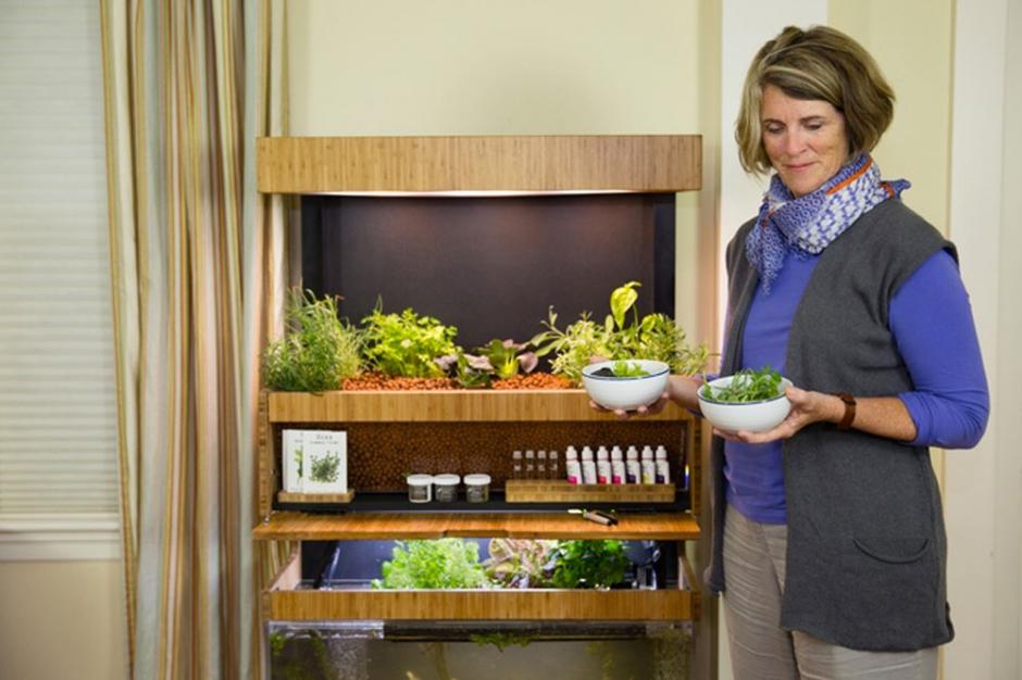 grove un jardin d int rieur pour cultiver ses l gumes. Black Bedroom Furniture Sets. Home Design Ideas