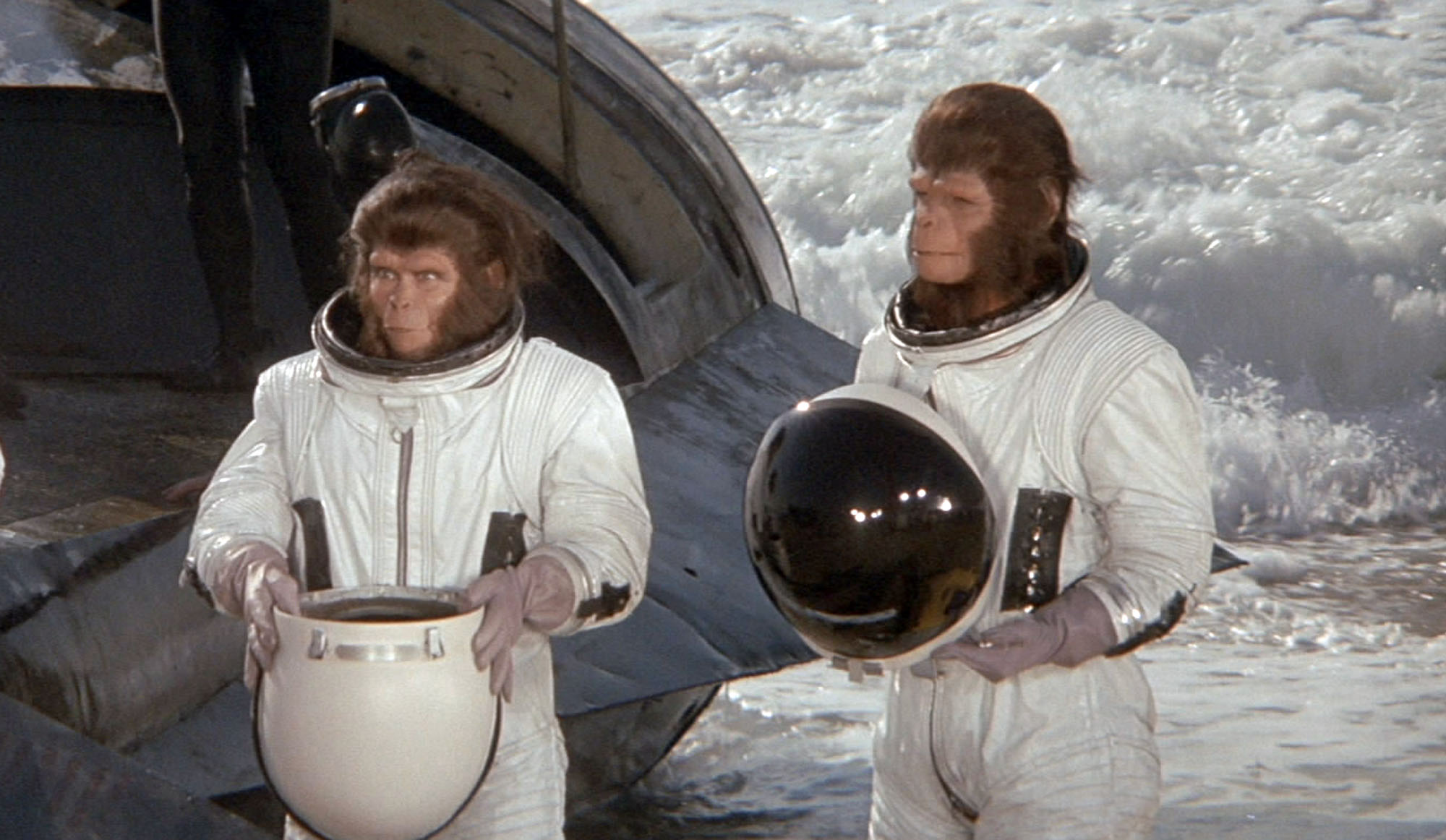 Les animaux nos fr res de l 39 espace - Les sinsin de l espace ...