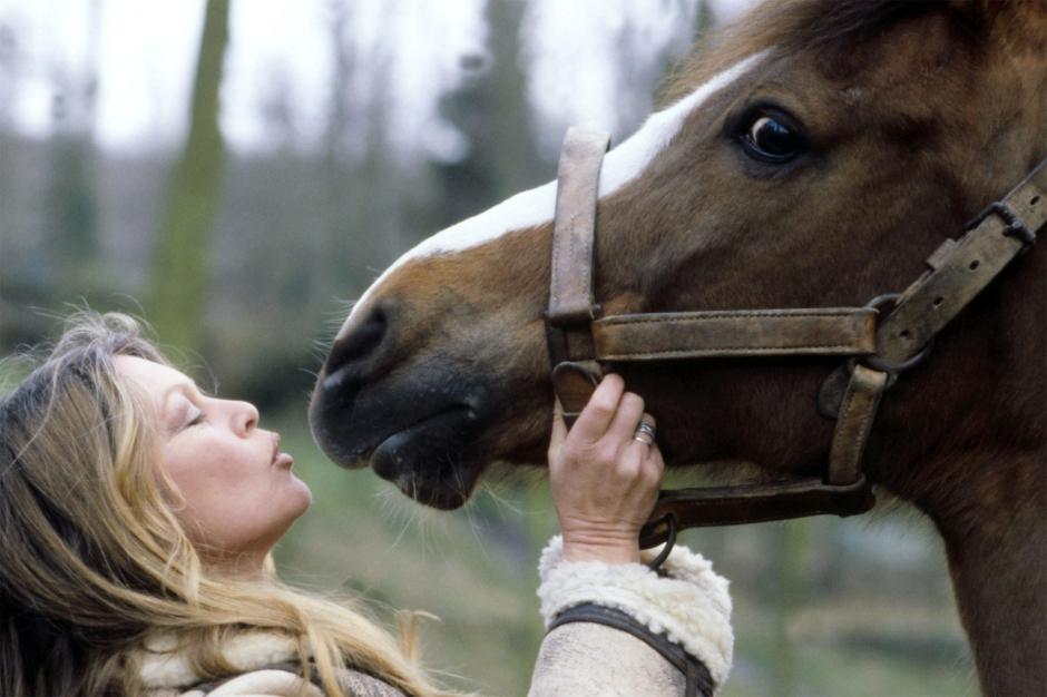 Le coup de cravache de Brigitte Bardot au Canada