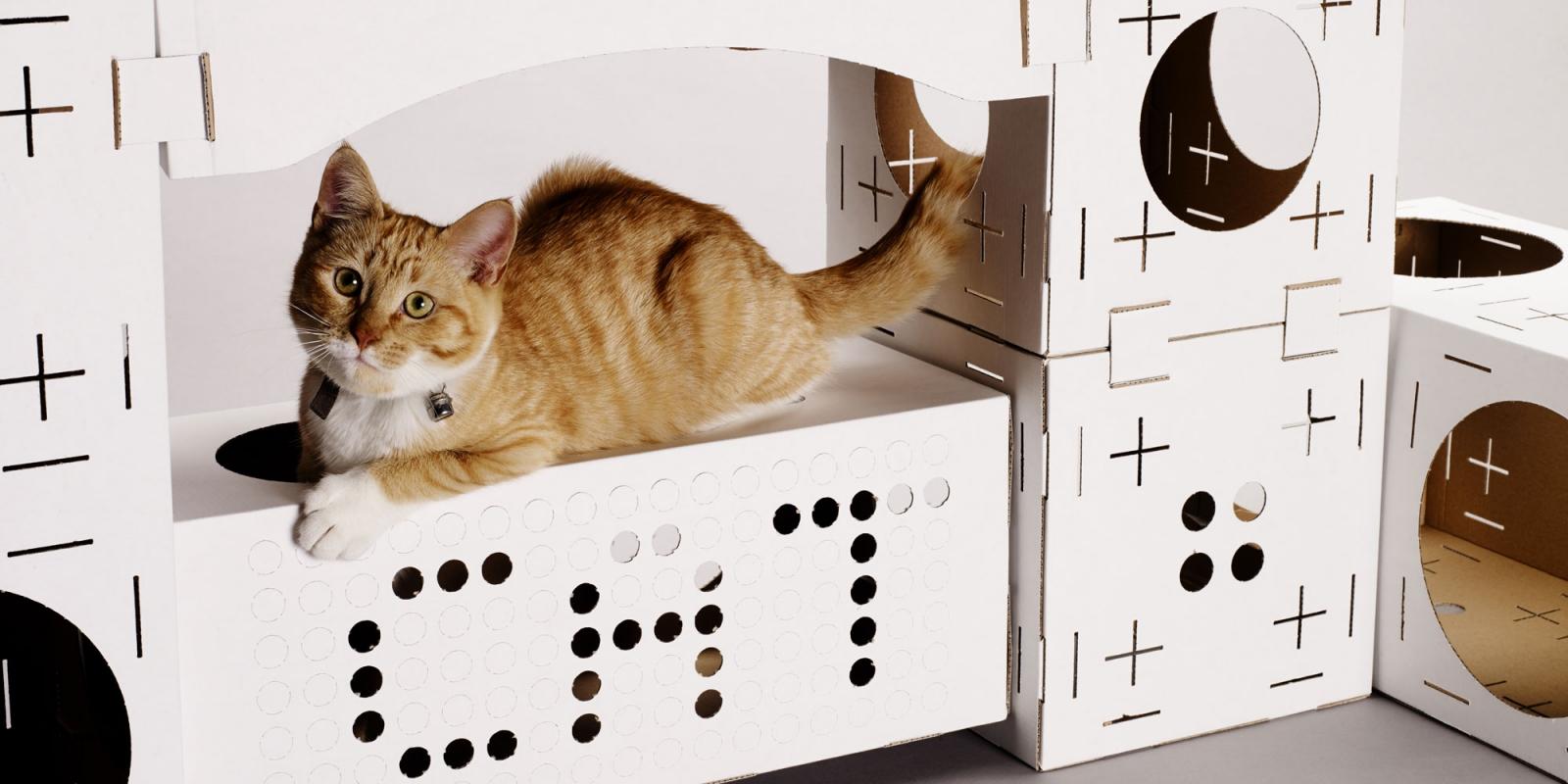 Jeu pour chat maison images for Articles pour la maison