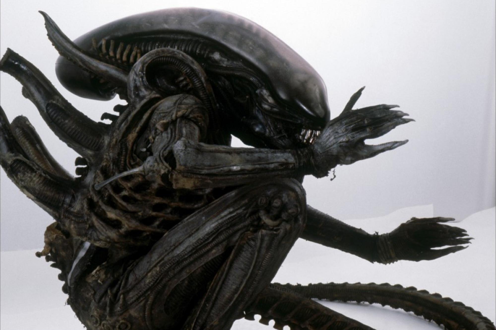 Alien et monstre sexe