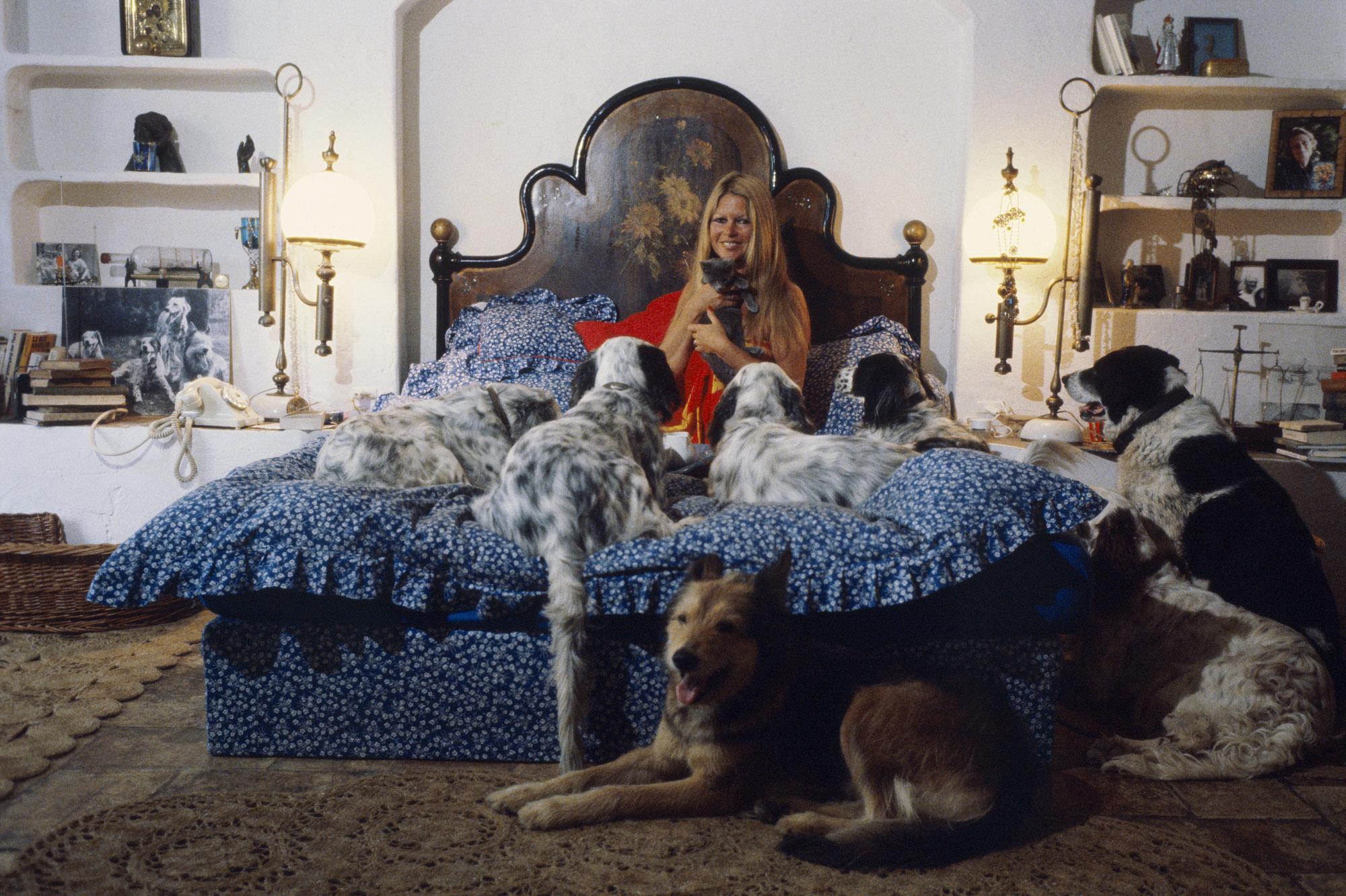 brigitte bardot la meilleure amie des animaux. Black Bedroom Furniture Sets. Home Design Ideas