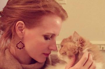 Insta Story : Jessica Chastain, la joie de vivre
