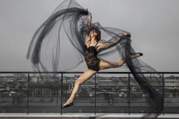 """""""Danse avec les stars"""" - Le fabuleux destin de Fauve"""